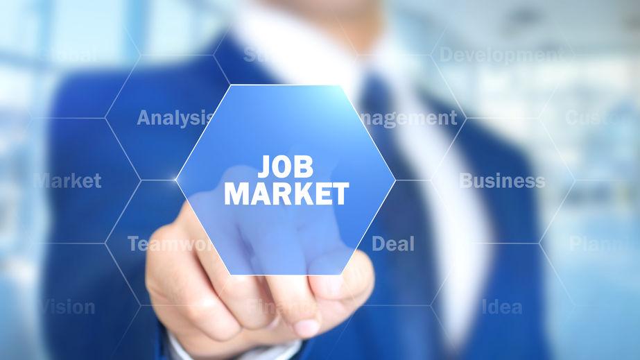 labour market canada consultant